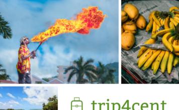 Дешевые туры на Ямайку