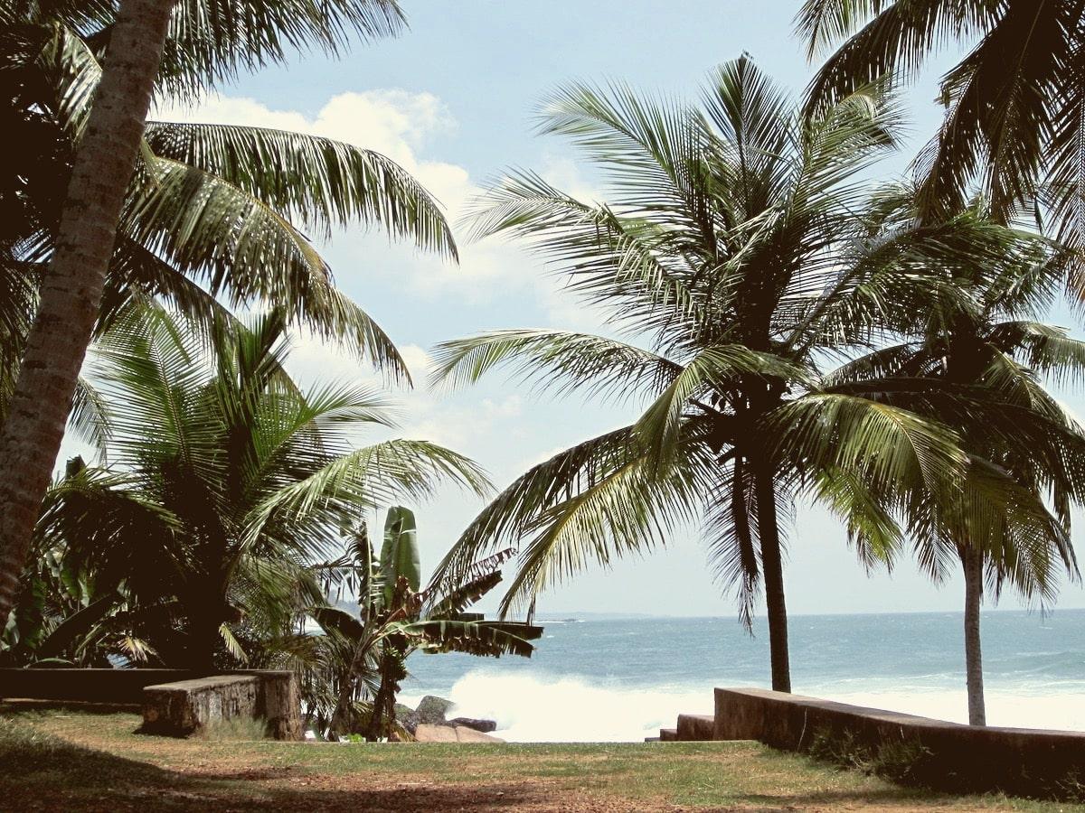 Поехать в Шри-Ланку в феврале