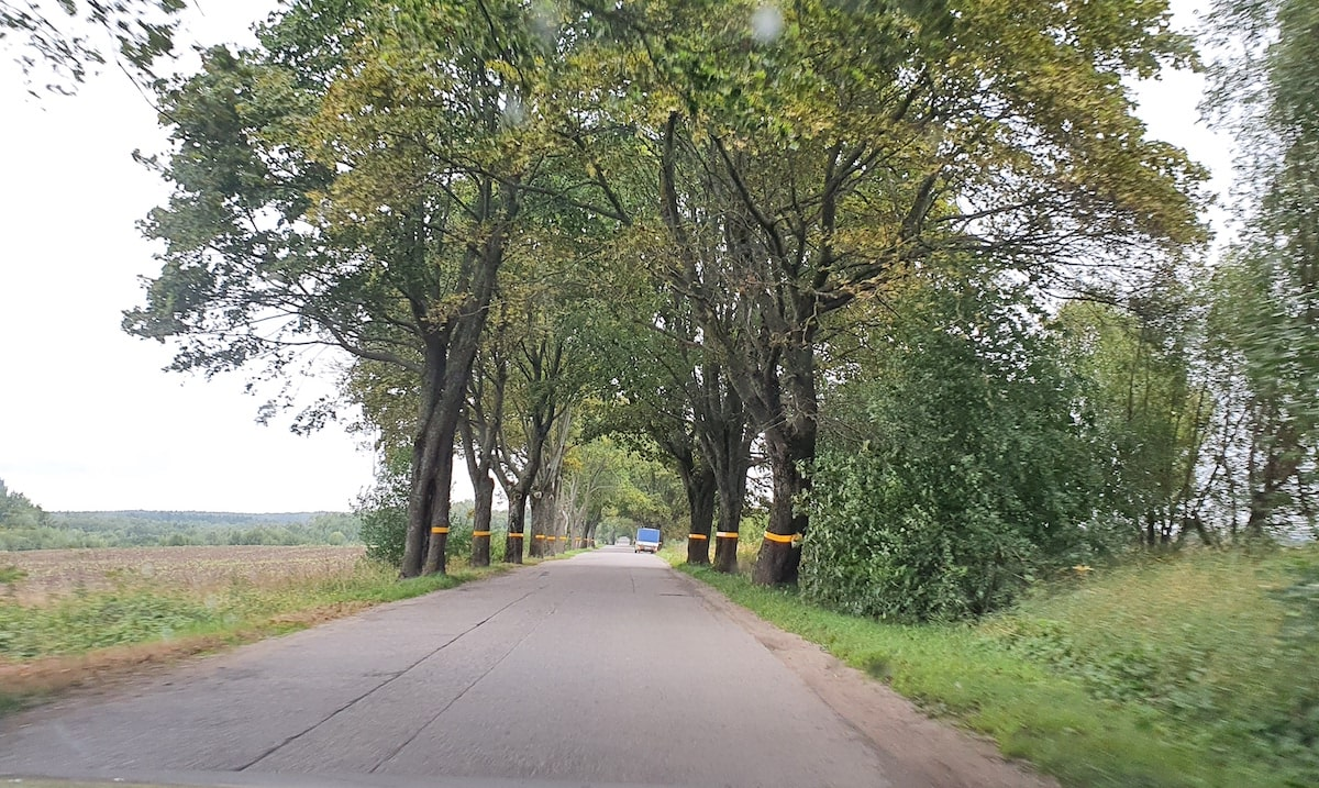 Дороги между населенными пунктами в Калининграде